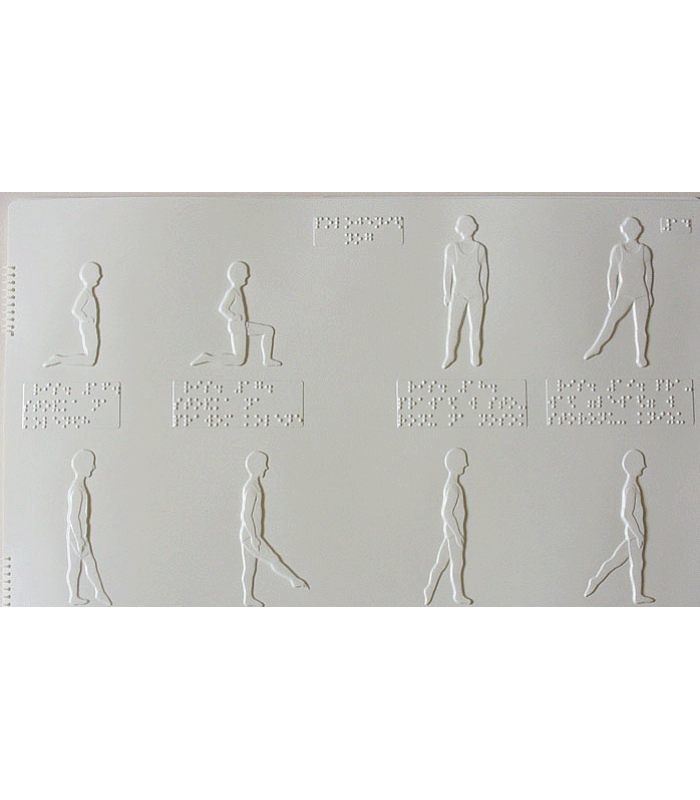 Азбука движения (основные положения тела)